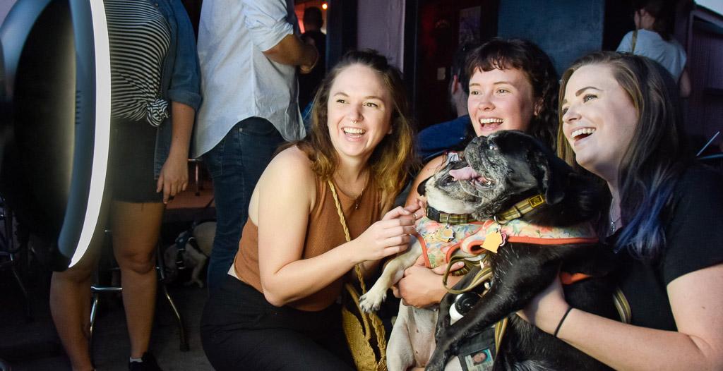 HALO Dog Photo Booth