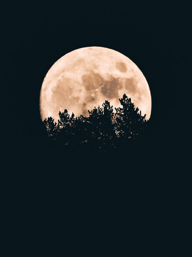 full moon photobooth background with trees on horizon