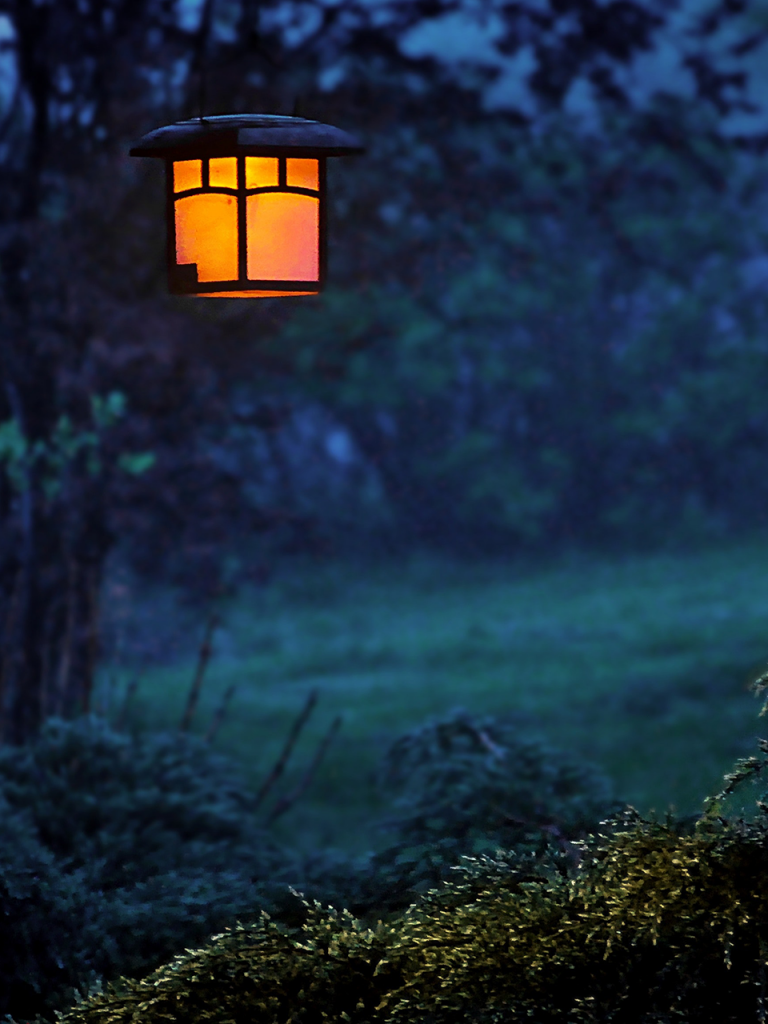 eerie gas lantern hanging in foggy woods for green screen photo booth background